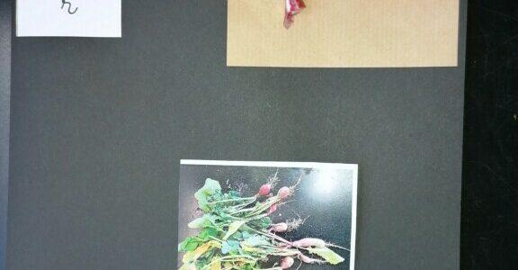 Création d'un abécédaire des fruits et des légumes par les GS.